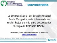 CONVOCATORIA REVISOR FISCAL